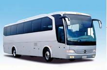 transporte de animales en autobús