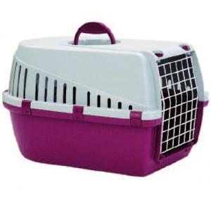 consejos-para-el-transporte-de-mascotas