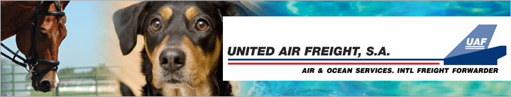 united-air-freight