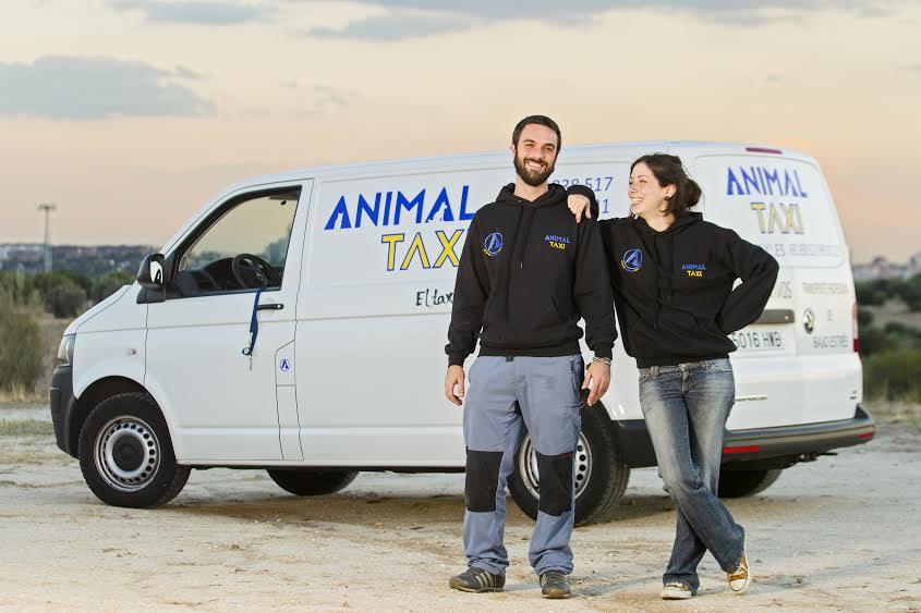 Animal Taxi - transporte de mascotas por España