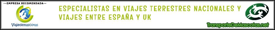 Banner 900x100 viajedemascotas