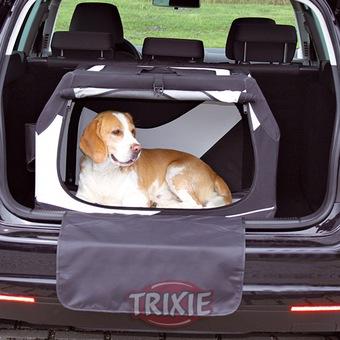 Consejos para irse de vacaciones viajando por carretera con mascotas