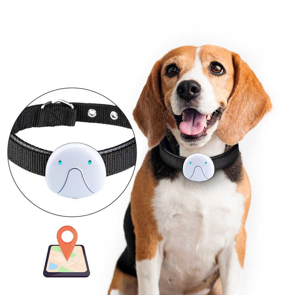 collares GPS para perros